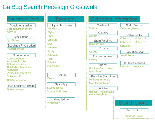 This figure shows the Crosswalk Table for the redesigned CalBug user interface. It is organized according to the three sections of the new user interface, namely Specimen Details, Taxonomy, and Collection Information. For each of the input fields, the table lists one or more fields in the underlying database that are searched for the content of the input field. For example, the Other Number field in the simplified CalBug user interface maps to eight fields in the database, including Collection Code, Accession Number, and Collectors ID.